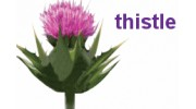 Thistle Industial Services
